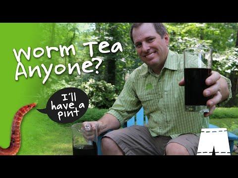 How To Make & Use Composting Worm Tea