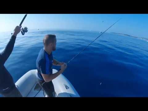 pêche DAUPHINS, BONITES et THONS en Méditerranée (Cannes,Antibes,Nice) HD