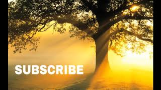 HOUR Most Beautiful Relaxing Voice For Stress Relief By Ameer Shamim