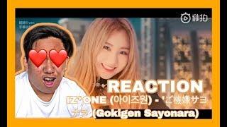 gokigen sayonara izone Videos - 9tube tv