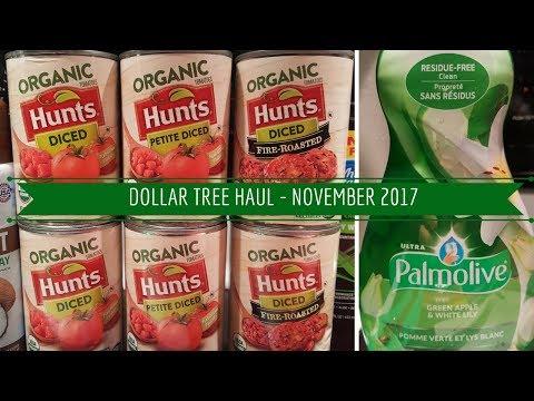 DOLLAR TREE HAUL - NOVEMBER 2017