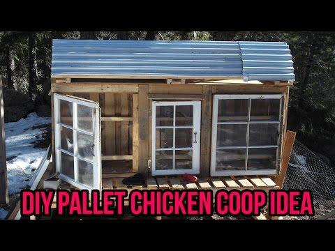 DIY  Pallet Chicken coop Idea