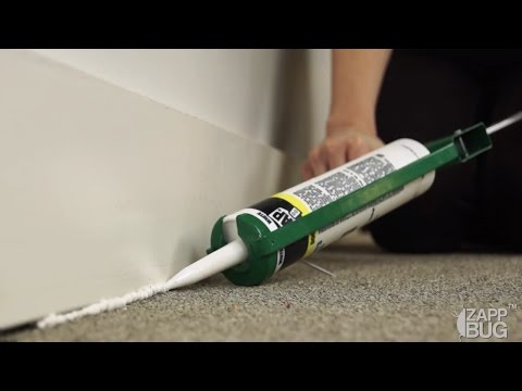 STEP #5: SEALING CRACKS AND CREVICES | Get rid of Bed Bugs
