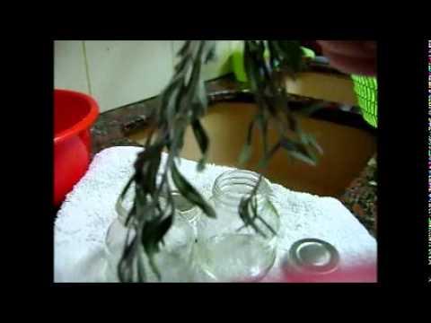 Black Olives Dry Cure