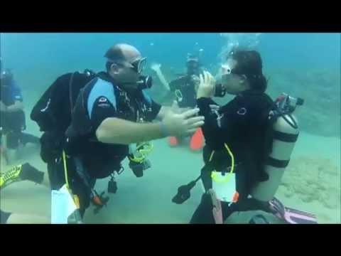 Diving In- How to Get Scuba Diving Certified