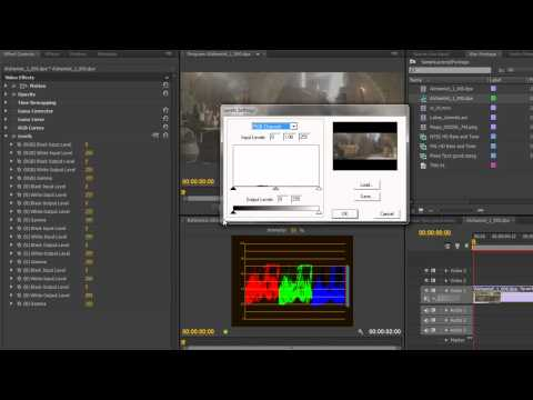 Premiere Pro CS6 Techniques: 63 Color 16 Levels Effect