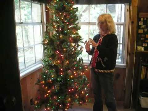 Keeping Dogs and Cats Safe Around the Christmas Tree