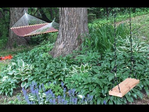 DIY Tree Swing Under $30