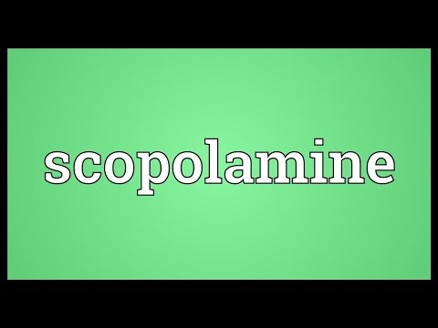 Scopolamine Meaning