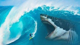 ماذا لو لم تنقرض أسماك القرش الميغالودون Megalodon ؟