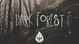 Download Dark Forest 🦇 - An Indie/Folk/Alternative Playlist (Halloween 2017) Video