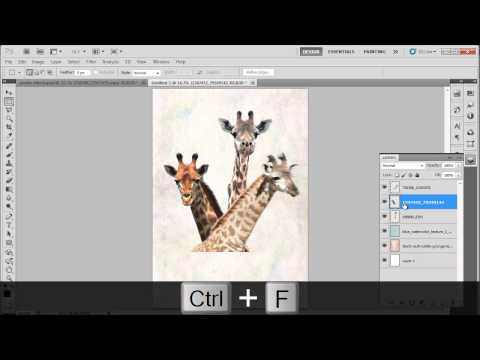 How to Design a Save the Wildlife Poster