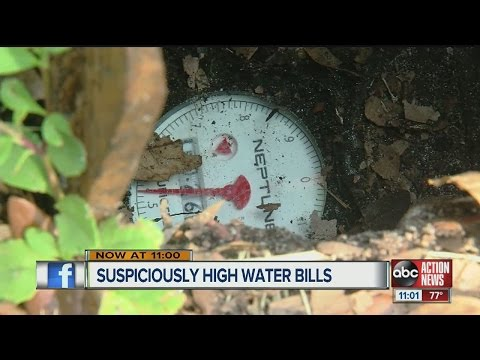 Tampa residents report 'crazy high' water bills, city responds