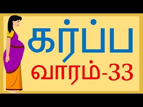 The Pregnancy   Tamil   Week by week   33 weeks