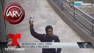 Buscan a hombre que lanzó orina a mujeres en el Bronx | Al Rojo Vivo | Telemundo
