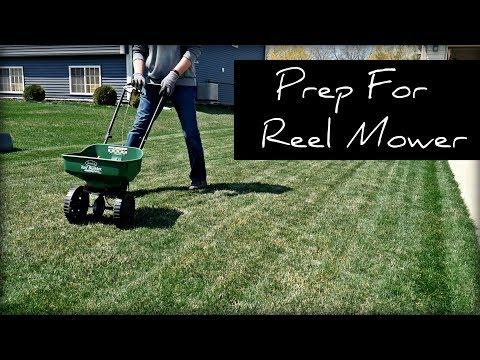 Prep For Swardman Reel Mower Test Plot - Dethatch, Fertilize, DIY Above Ground Sprinkler System
