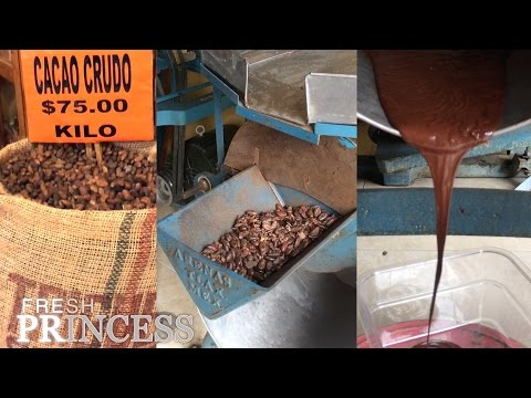 Bean to Bar: How to Make Chocolate from Cocoa Beans  |  Fresh P