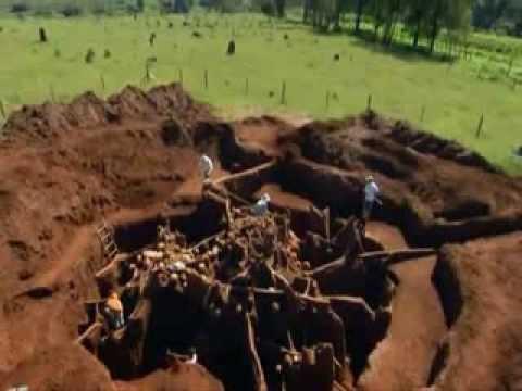 ★ Giant Ant Colony Excavated ★