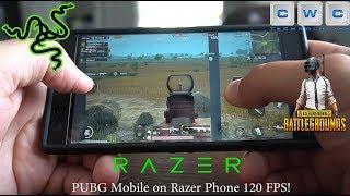 PUBG Mobile on Razer Phone 120 FPS Best Gaming Phone!