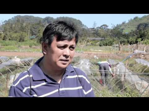 Soil Property and Fertility Improvement through Composting Using Trichoderma