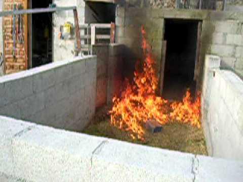 Burn them bugs!!!