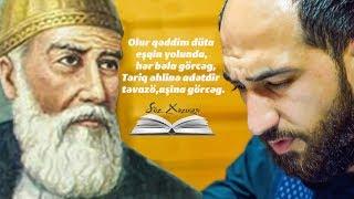 Vüqar Biləcəri - Məhəmməd Fizulinin