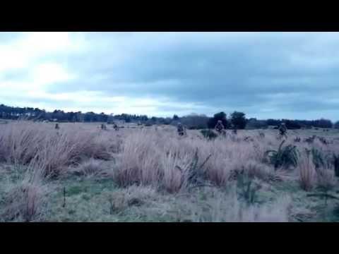 Flash Bang Test Footage