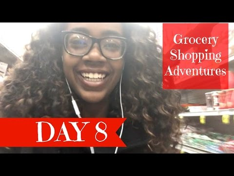 Grocery Shopping Adventures || Day 8