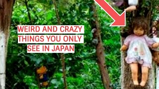 Weird and  Crazy  Things You only see in Japan