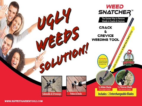 Weed Snatcher, The Ultimate Crack & Crevice Weeding Tool