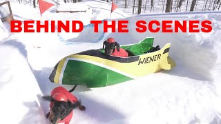 Bobsled Wiener Dogs - BEHIND THE SCENES