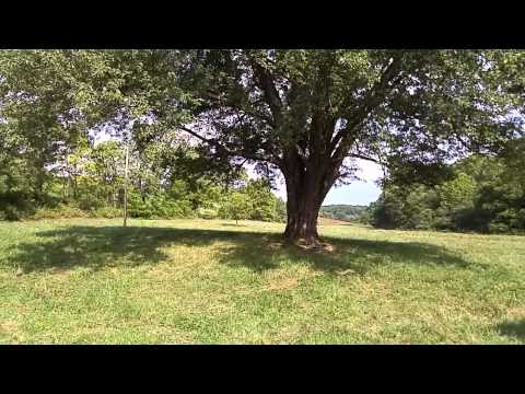316 Acres of Land For Sale. Part 2