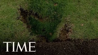 A Sinkhole Has Been Spotted On The White House Lawn | TIME