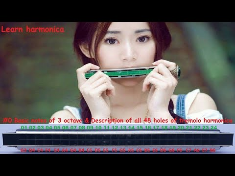 how to play harmonica step by step learning series #0 Notes Description of 48 Holes