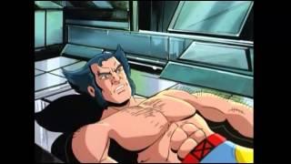 Wolverine vs Alpha Flight