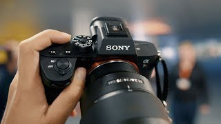 Sony a7R III Hands-on Preview (& 24-105 f/4 G)