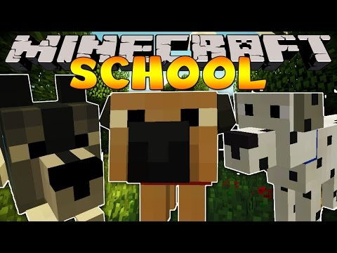Minecraft School : VISITING THE PET STORE!