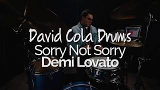 demi lovato sorry not sorry mp3 download 320kbps