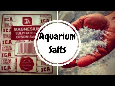 Types of Salts   Aquarium Salt Vs Epsom Salt