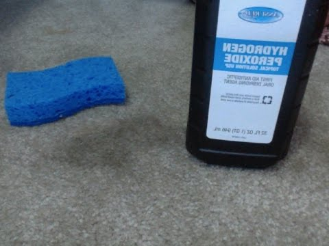 Remove Carpet Stains Naturally without using Harsh Chemicals