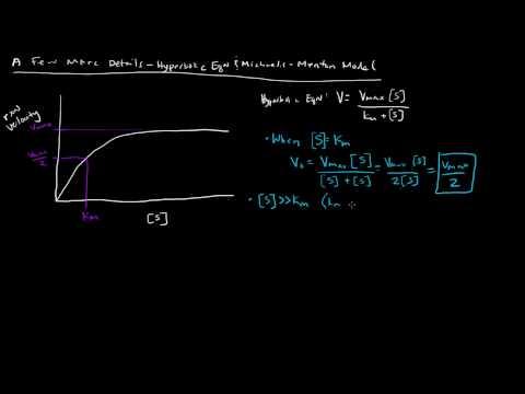Enzymes - Michaelis Menten Model - A Few More Details