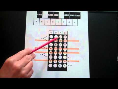 Violin how to find notes on the Violin Fingerboard Geography part 2  fingerboardworkbookseries.com