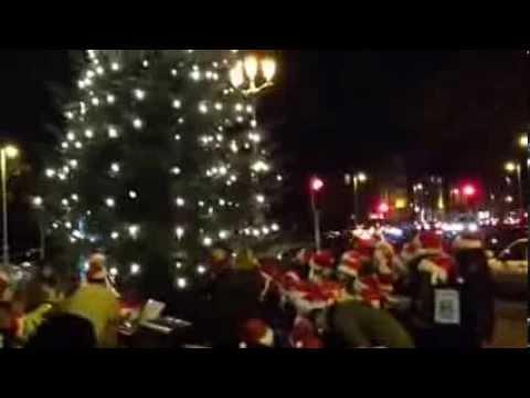 Liberties Christmas Tree 2013