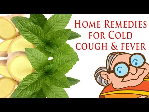 Simple Home Remedies for Common Illnesses | Cold, Cough, Fever | Top 25 Natural Ayurvedic Remedies |
