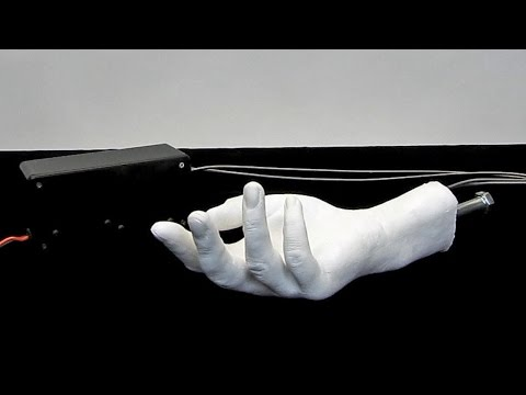 Animatronic Hand Display