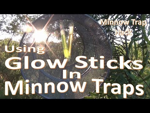 Minnow Trapping with Glow Sticks -Unconventional Baits-