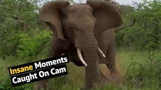 Top 36 Ultimate Most Insane Moments Caught On Cam