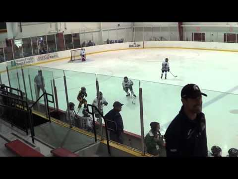 2015 Thanksgiving Tournament Golden Wolves squirt AA vs Everblades blue PWA 11/28/15 0:1 period 1