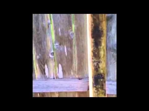 How to remove a rotted off wooden fence post from cement and replace in same hole the EASIEST way