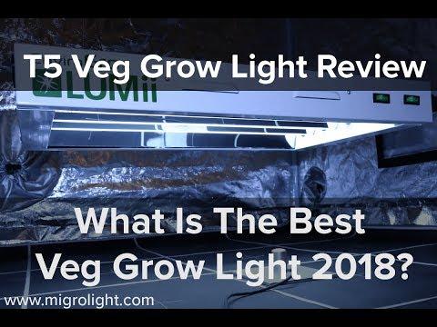 T5 Veg Grow Light Review - What is the best veg grow light 2018?